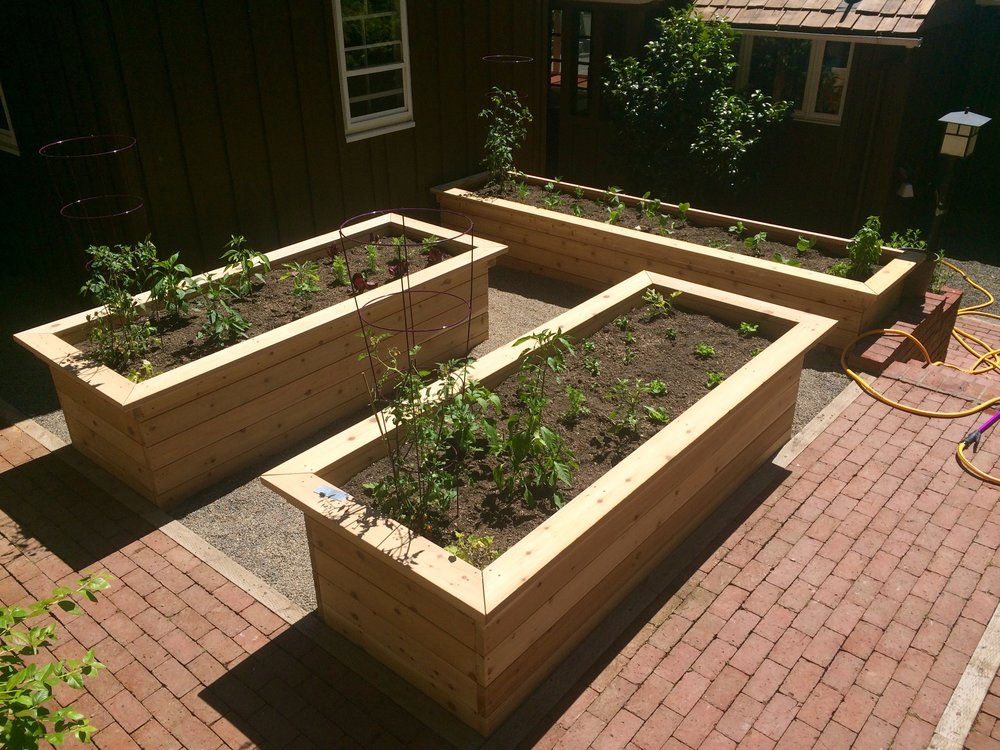 Courtyard Raised Beds