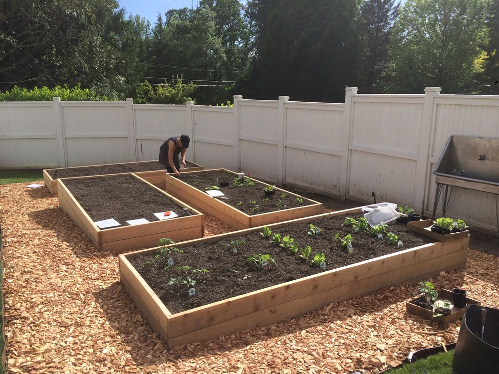 Raised Bed Prep 4.jpg