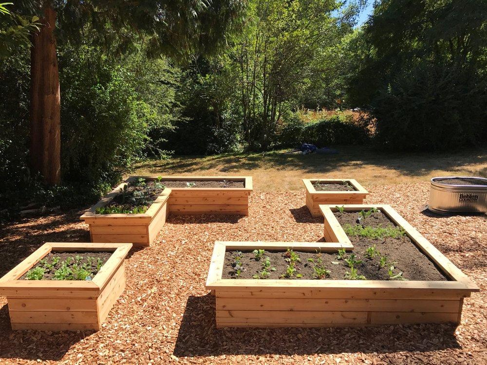Fulmer Garden Build 4