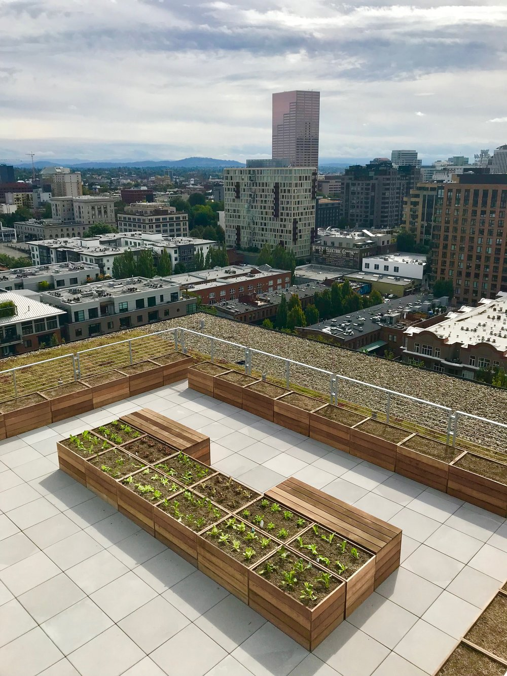 Pearl District Rooftop Garden