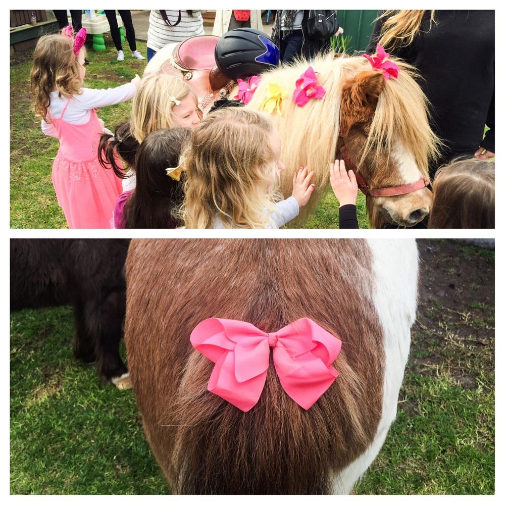 ponies coll 3.jpg