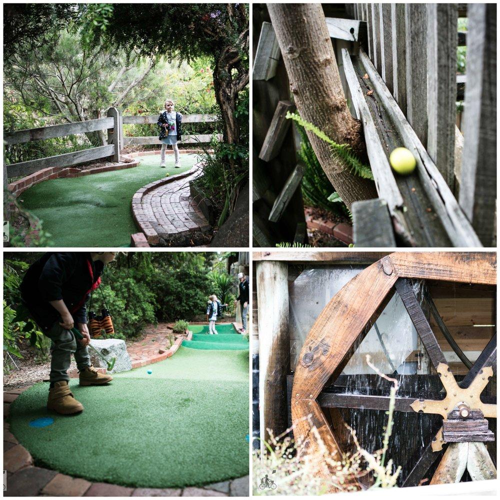 golf coll 2.jpg
