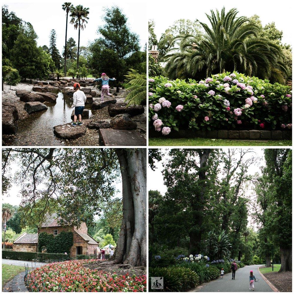 fitzroy gardens coll 4.jpg