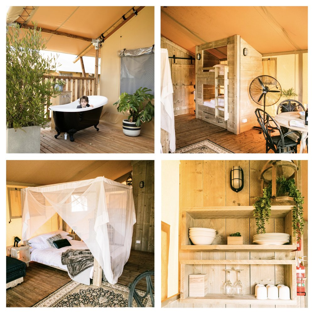 safari tents b1.jpg