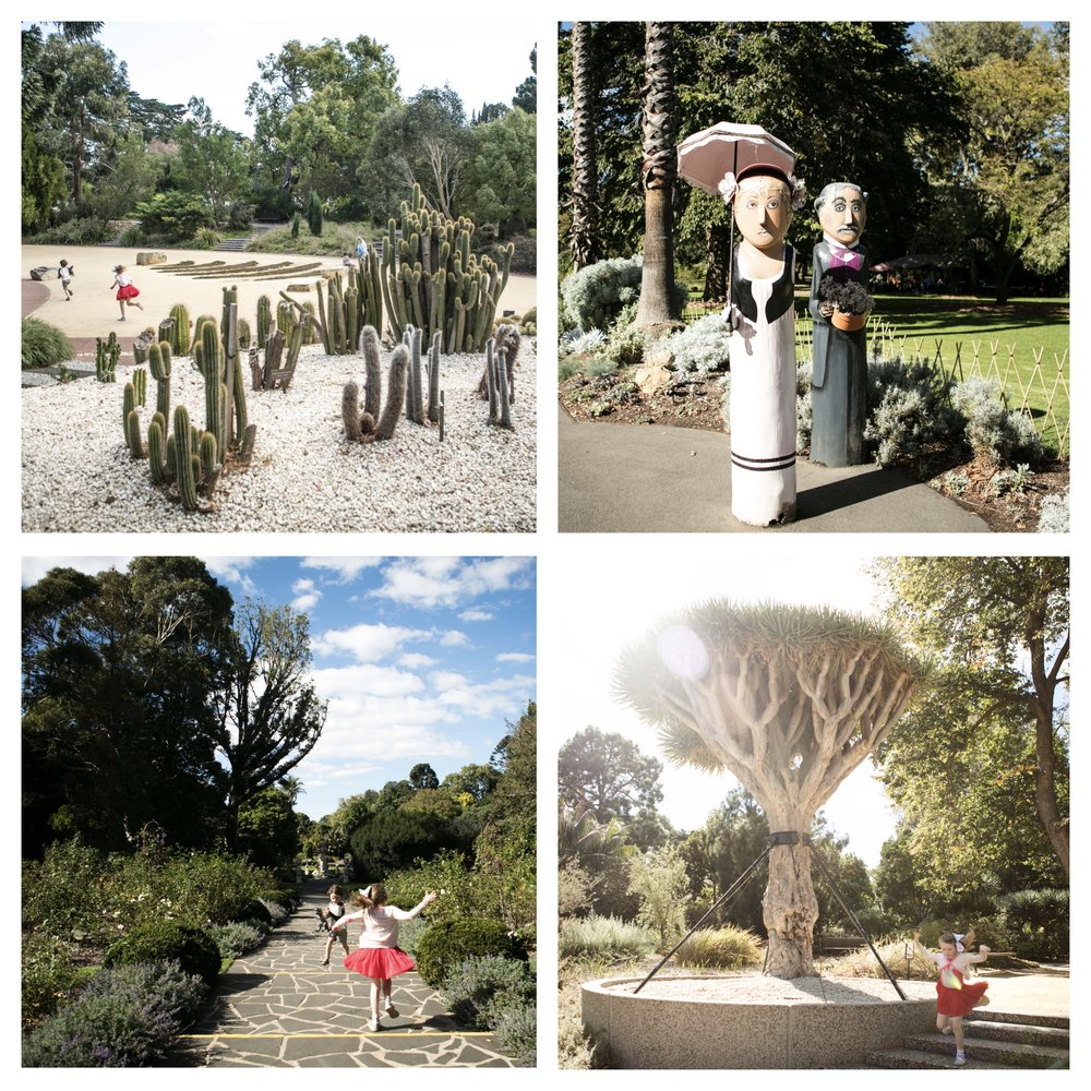 geelong botanical 1.jpg