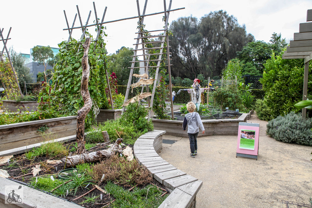 Ian Potter Children's Garden