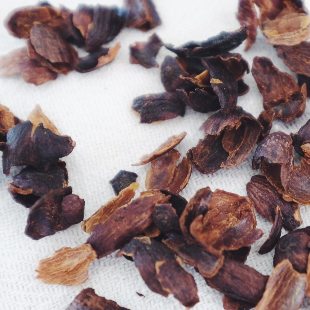 Cascara or the dried skins of coffee cherries