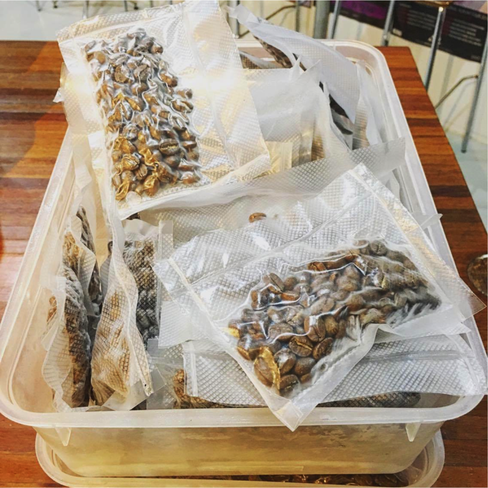 Single doses of vacuum sealed decaf coffee for freezing. Photo courtesy of Michael Cameron
