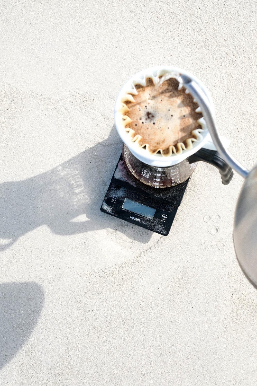 tlbcc_beach-53.jpg