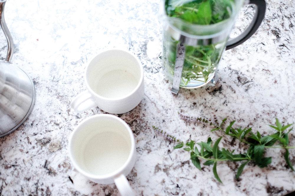 herb_garden_tea_tLBCC-90.jpg