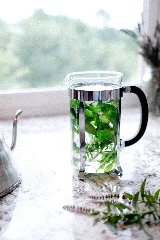 herb_garden_tea_tLBCC-57.jpg