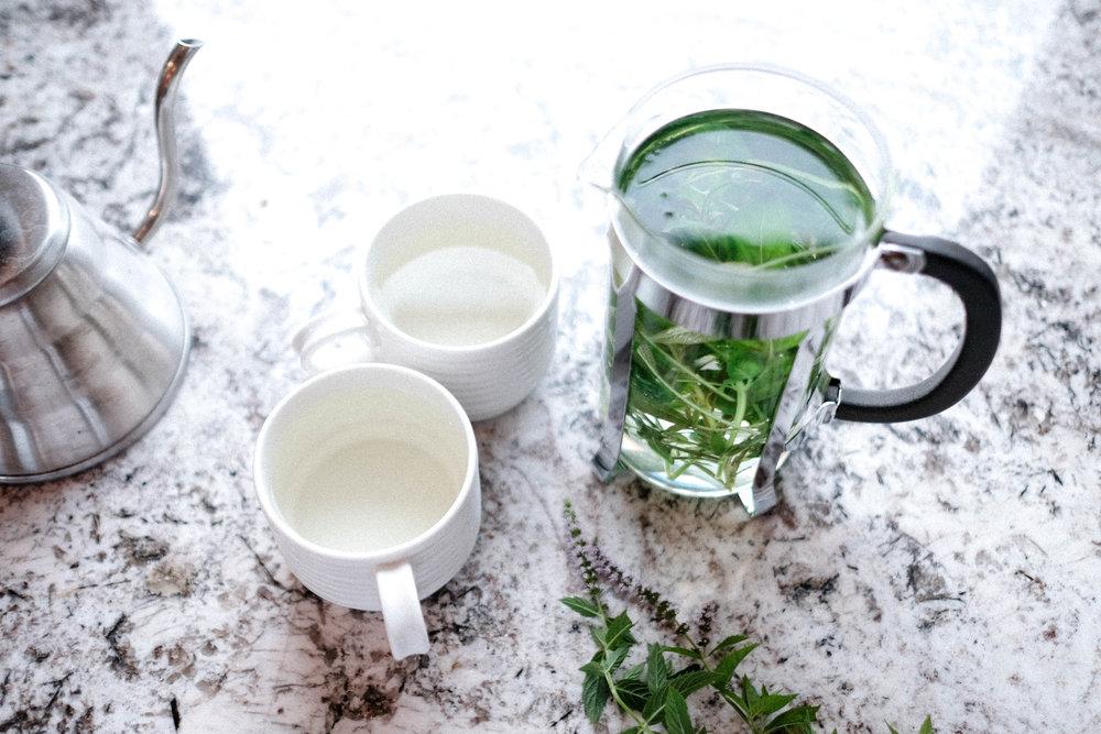 herb_garden_tea_tLBCC-72.jpg