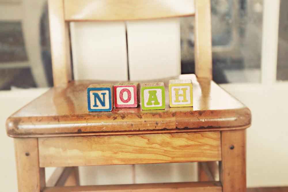 Noah_7.jpg
