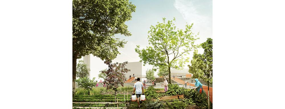 Rendering_Cummunal_gardens.jpg
