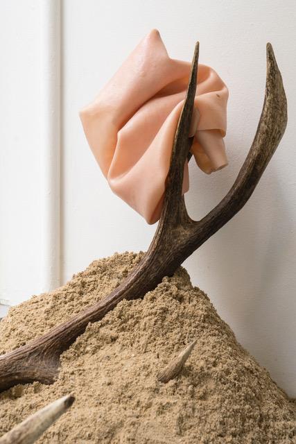 Romain SARROT Installation, bois de cerf, sable, silicone, 2018