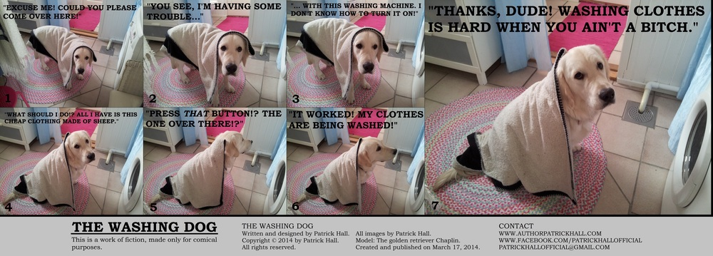 THE WASHING DOG: This is a short comic strip, for which Hall sincerely apologizes. It was written and designed by Patrick Hall on March 17, 2014. Copyright © 2014 by Patrick Hall. All rights reserved. Feel free to download it and spread it around, as long as you credit the source and don't charge people for it.