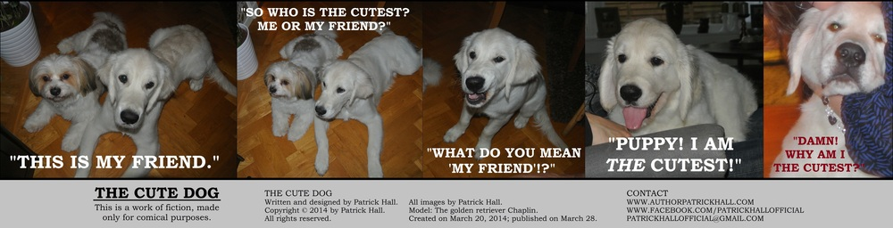 THE CUTE DOG : This is a short comic strip, for which Hall sincerely apologizes. It was written and designed by Patrick Hall on March 20, 2014. Copyright © 2014 by Patrick Hall. All rights reserved. Feel free to download it and spread it around, as long as you credit the source and don't charge people for it.