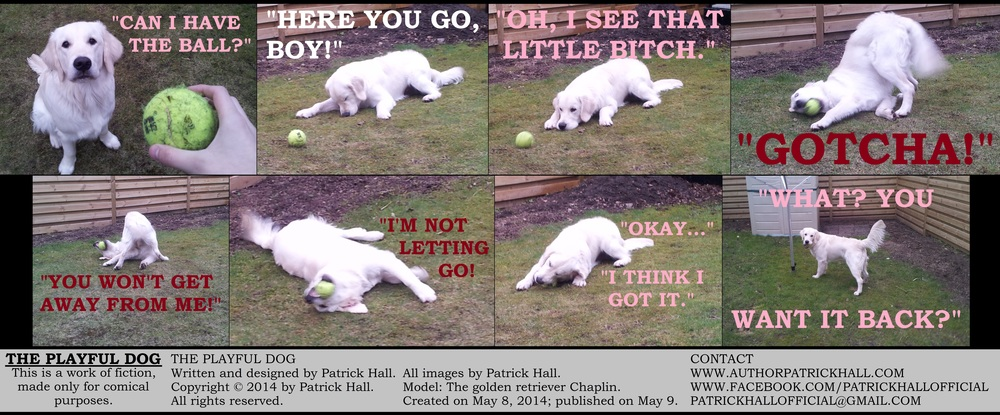 THE PLAYFUL DOG: This is a short comic strip, for which Hall sincerely apologizes. It was written and designed by Patrick Hall on May 8, 2014. Copyright © 2014 by Patrick Hall. All rights reserved. Feel free to download it and spread it around, as long as you credit the source and don't charge people for it.