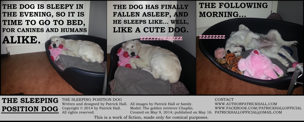 THE SLEEPING POSITION DOG : This is a short comic strip, for which Hall sincerely apologizes. It was written and designed by Patrick Hall on May 9, 2014. Copyright © 2014 by Patrick Hall. All rights reserved. Feel free to download it and spread it around, as long as you credit the source and don't charge people for it.