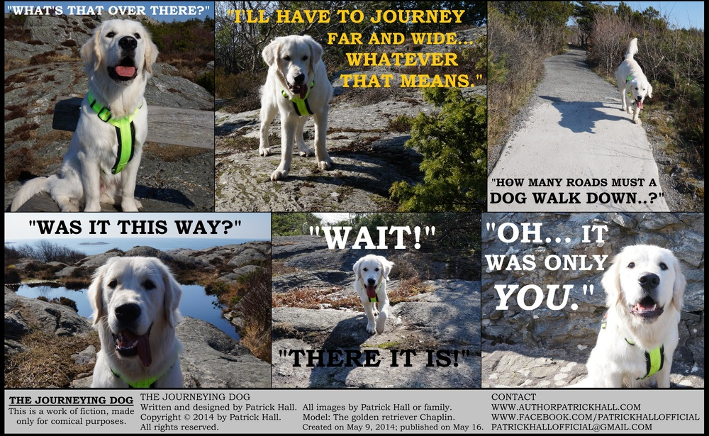THE JOURNEYING DOG : This is a short comic strip, for which Hall sincerely apologizes. It was written and designed by Patrick Hall on May 9, 2014. Copyright © 2014 by Patrick Hall. All rights reserved. Feel free to download it and spread it around, as long as you credit the source and don't charge people for it.