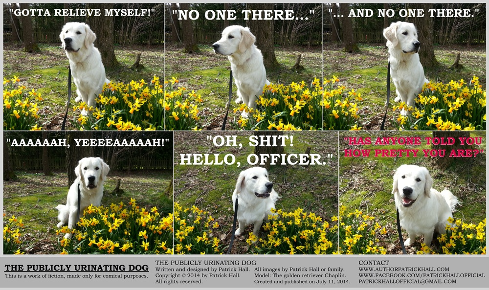 THE PUBLICLY URINATING DOG  : This is a short comic strip, for which Hall sincerely apologizes. It was written and designed by Patrick Hall on July 11, 2014. Copyright © 2014 by Patrick Hall. All rights reserved. Feel free to download it and spread it around, as long as you credit the source and don't charge people for it.