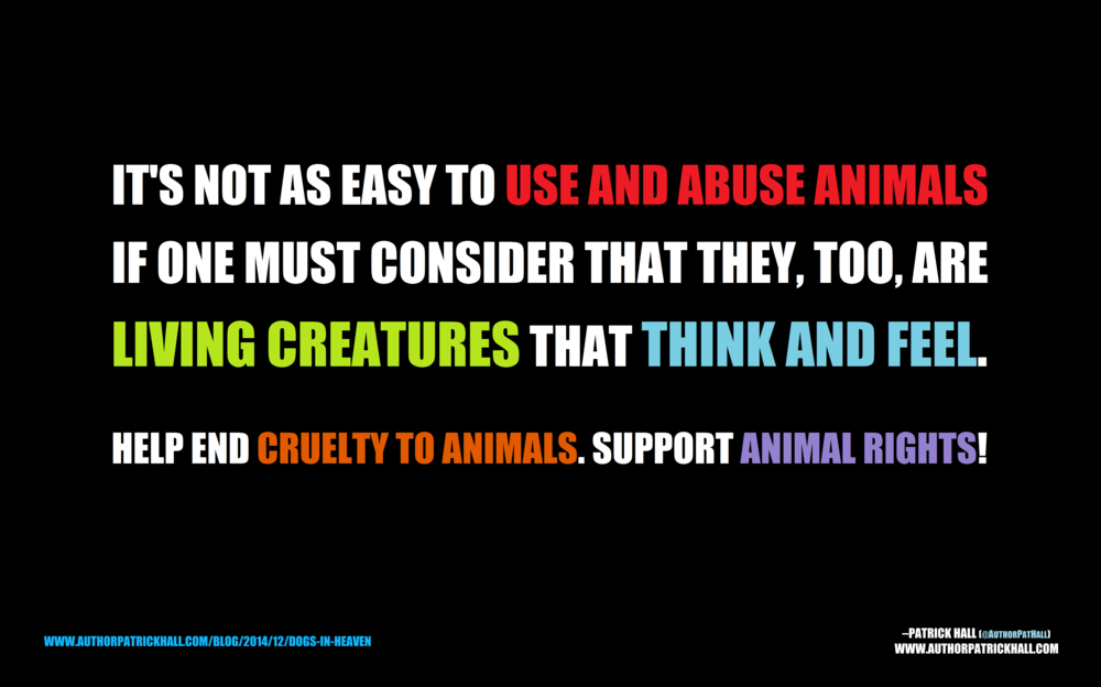 SUPPORT ANIMAL RIGHTS   :   This is a meme, created by Patrick Hall on December 12, 2014. Copyright © 2014 by Patrick Hall. All rights reserved. Feel free to spread it around.