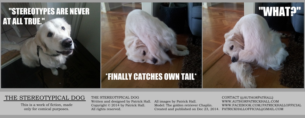 THE STEREOTYPICAL DOG   : This is a short comic strip, for which Hall sincerely apologizes. It was written and designed by Patrick Hall on December 23, 2014. Copyright © 2014 by Patrick Hall. All rights reserved. Feel free to download it and spread it around, as long as you credit the source and don't charge people for it.