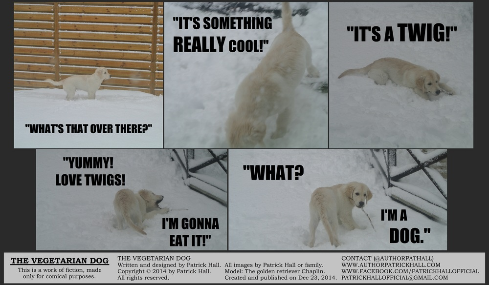 THE VEGETARIAN DOG   : This is a short comic strip, for which Hall sincerely apologizes. It waswritten and designedby Patrick Hall on December 23, 2014. Copyright © 2014 by Patrick Hall. All rights reserved. Feel free to download it and spread it around, as long as you credit the source and don't charge people for it.