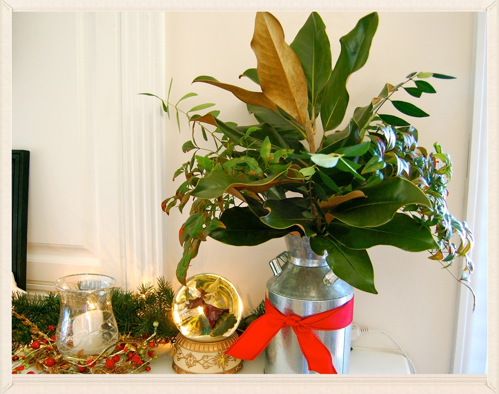 Christmas 'bouquet' backyard clippings . galvanized jug . red fabric ribbon
