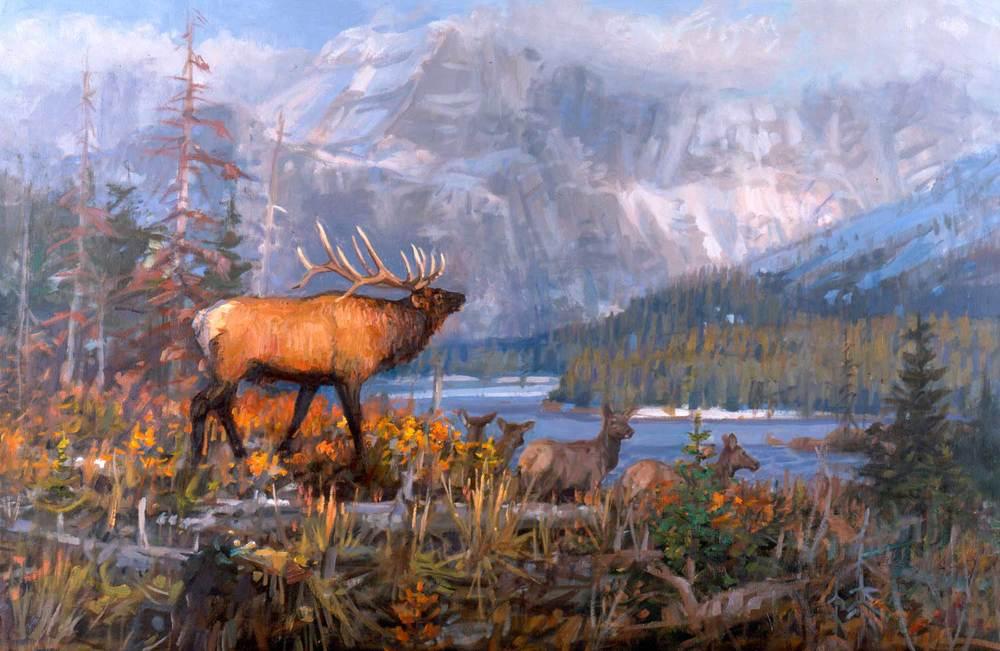 """""""Season of the Elk"""" by Joe Abbrescia"""