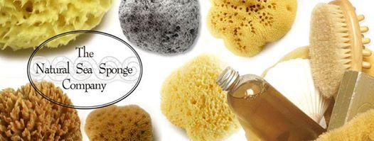 the natural sea sponge company