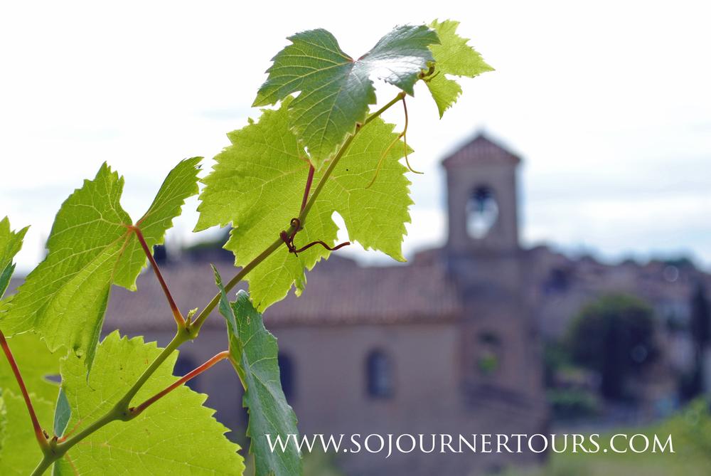 Luberon, France: Sojourenr Tours