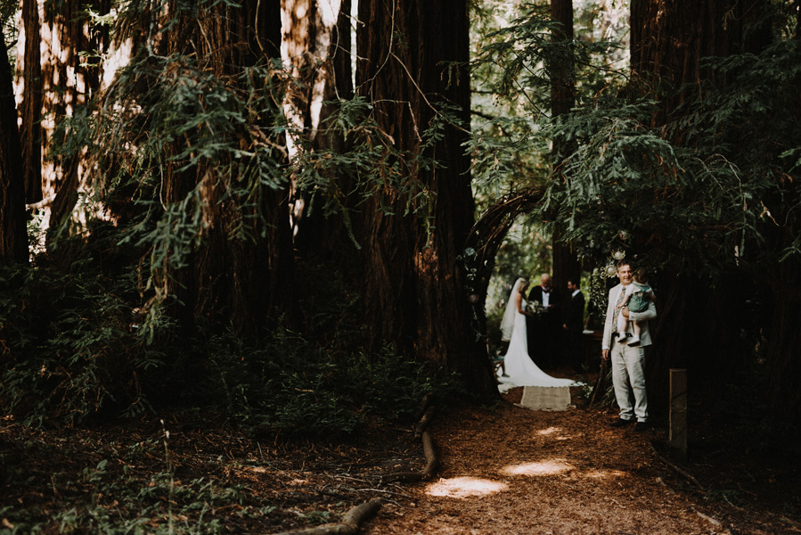 Bay Area Redwoods Wedding at The Island Farm.jpg.jpg