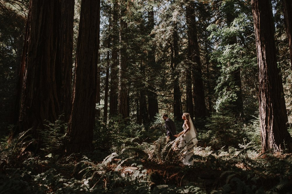 Wedding in Redwood Forest