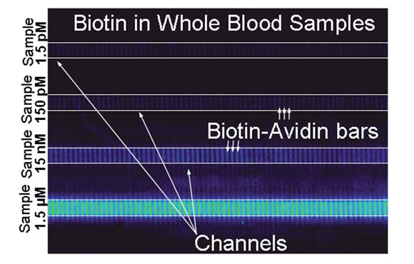 Detection of biotin at 1.5 pM, 150 pM, 15 nM & 1.5 µM