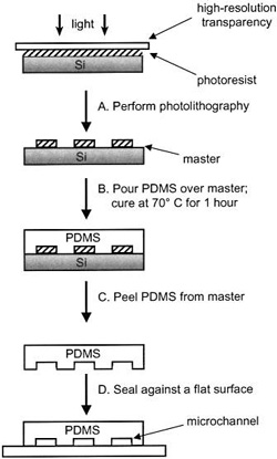 PDMS fabrication process, beginning with photolithography