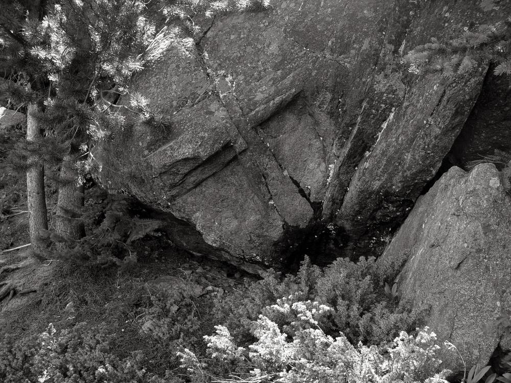 Monkey Rock.jpg