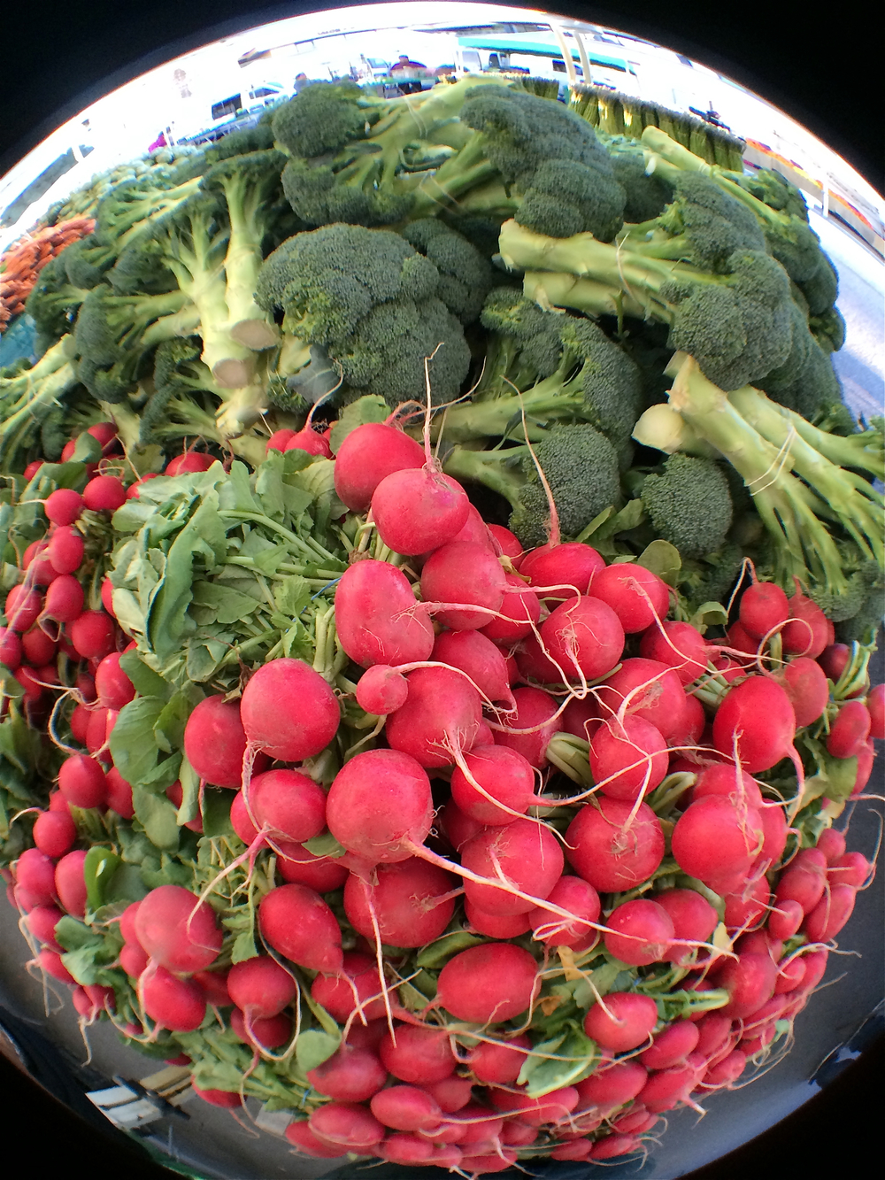 Farmer's Market Radishes