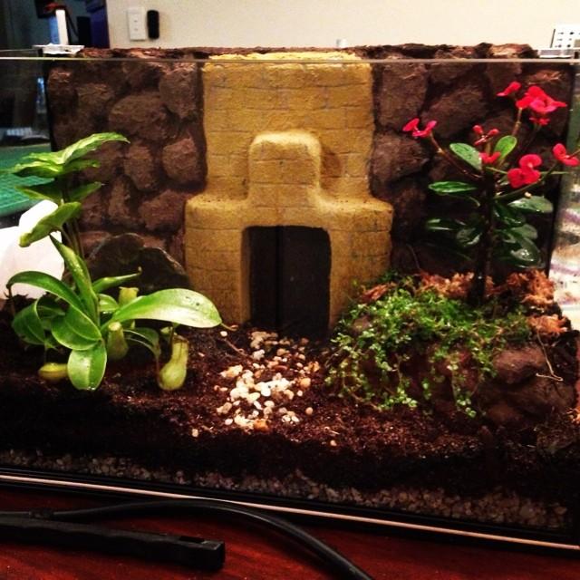 Article and video are live for my terrarium build.  Have a peek. - http://www.x2jiggy.com/blog/2014/7/18/aquarium-terrarium