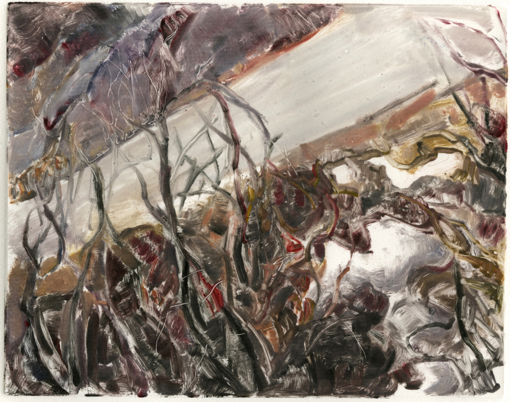 "Roadside melt (Red Rocks, Colorado), 8 "" x 10"", Monotype."