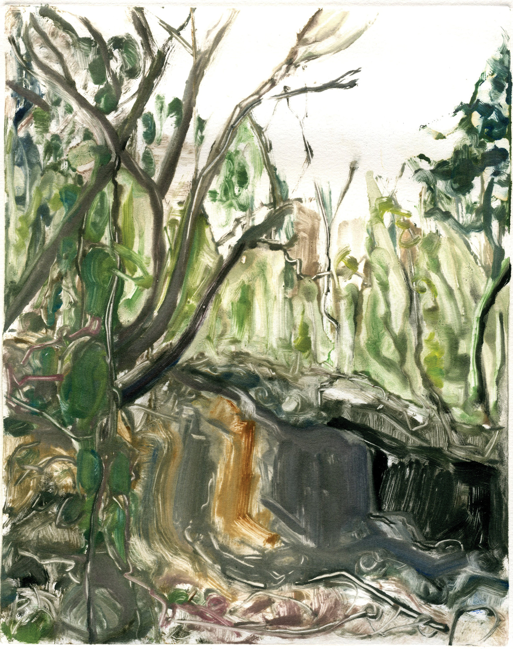 "Walk in an unknown wood (Altos de Chavón Residency),  10"" x 8"",   Monotype."