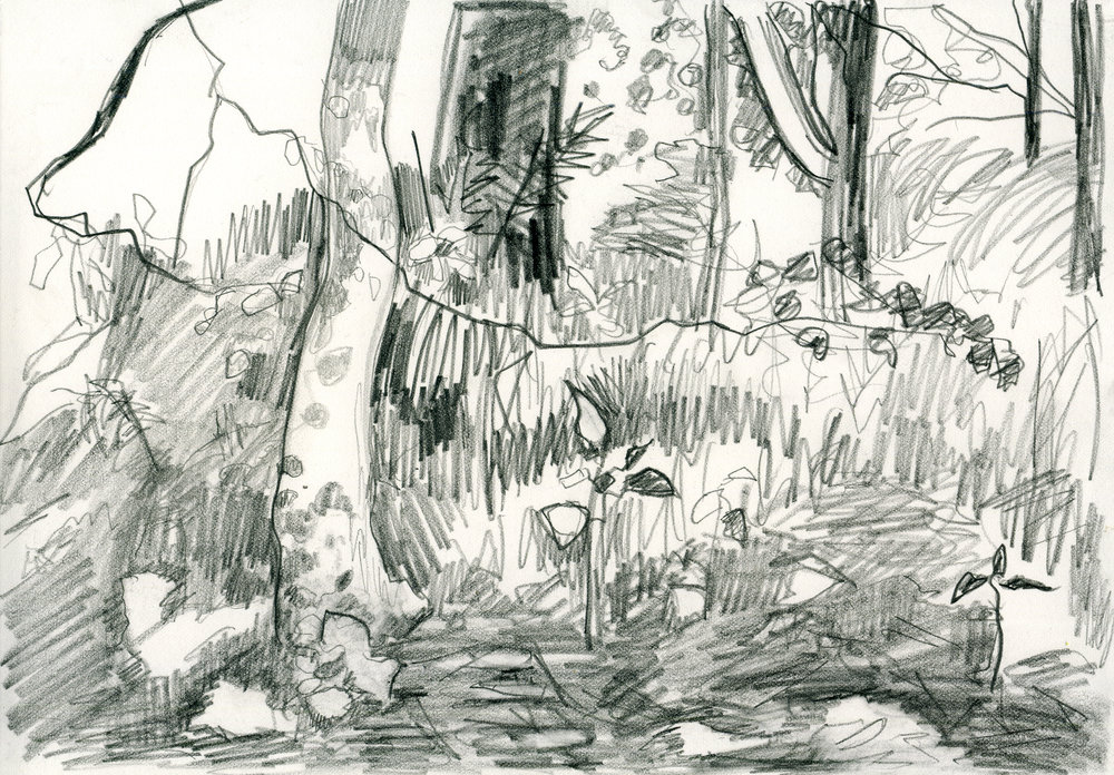 treesketchpencil001web.jpg