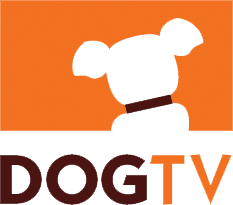 DogTV.png