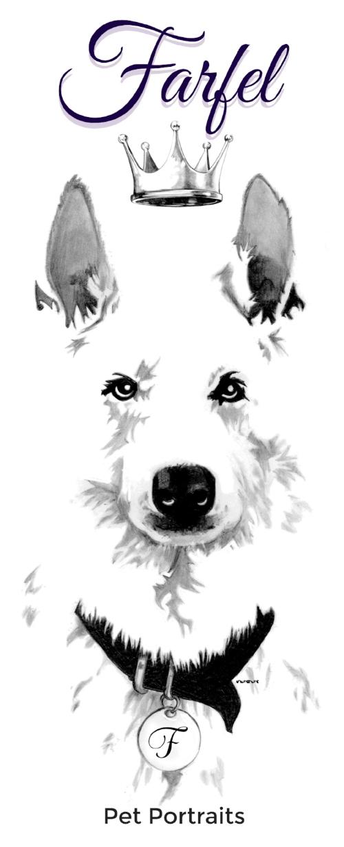 farfel Logo.jpg
