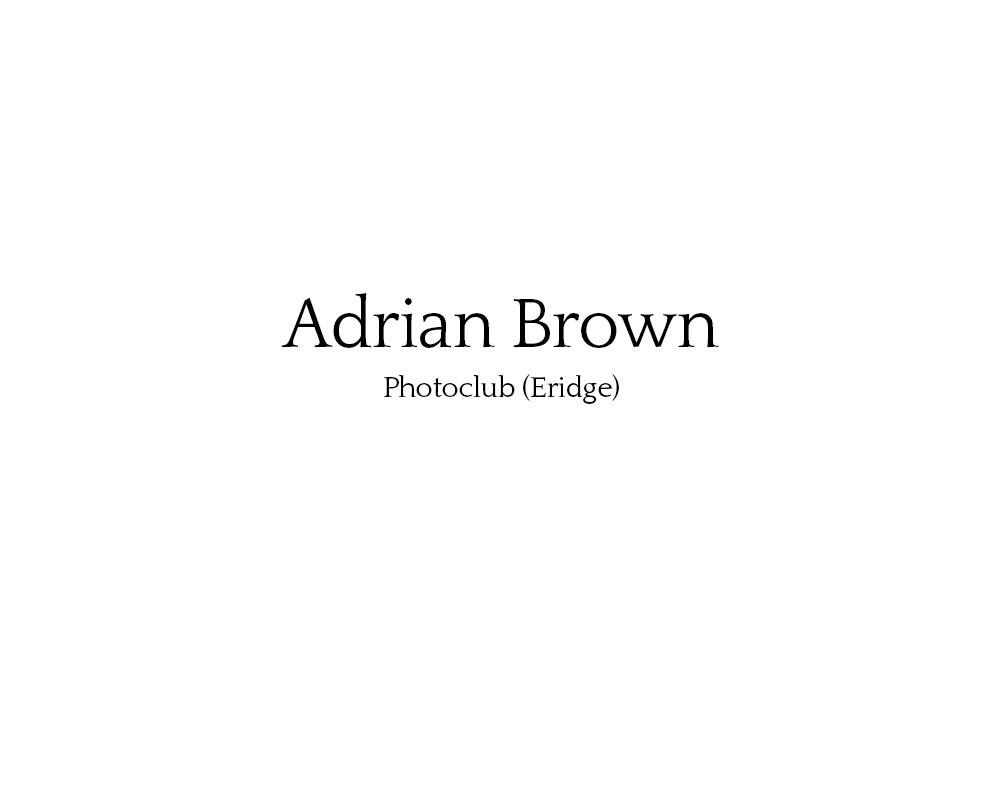 adrian_brown_01.jpg