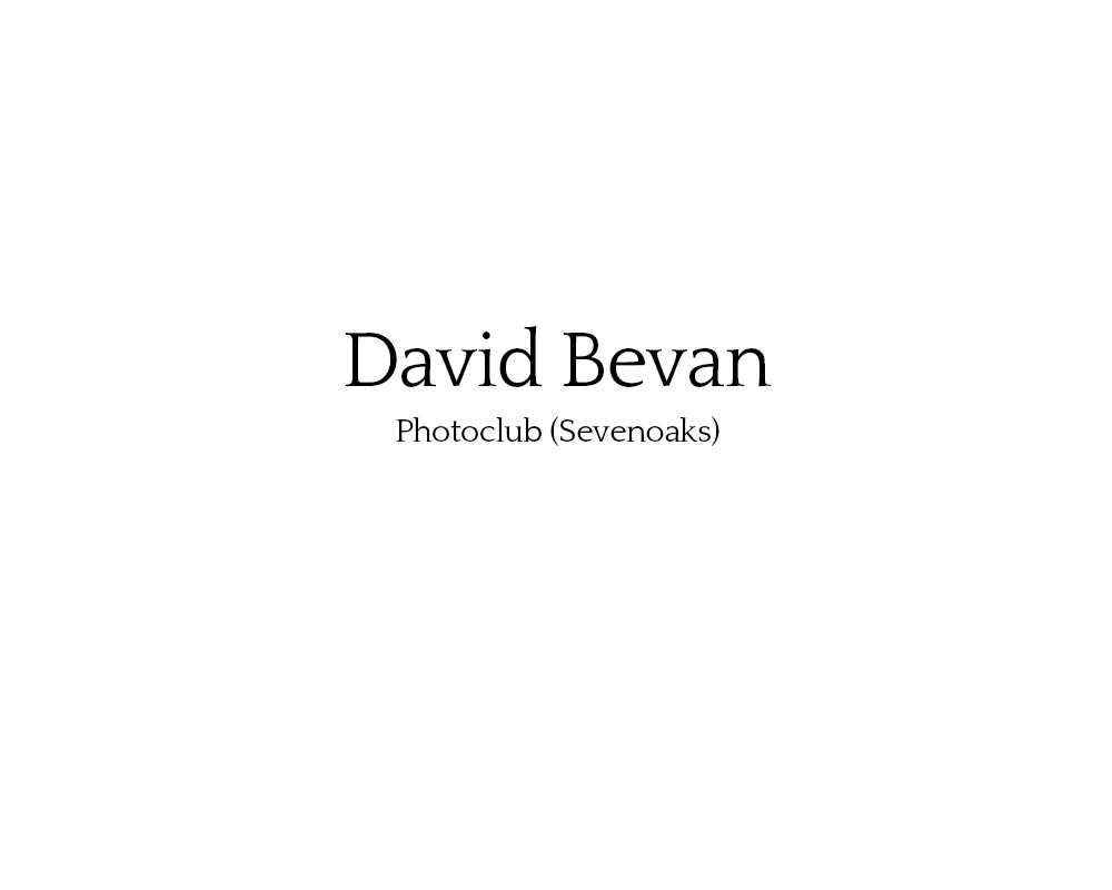 david_bevan_01.jpg