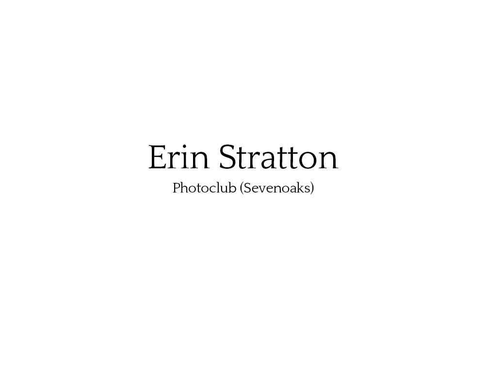 erin_stratton_01.jpg