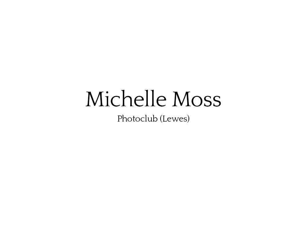 michelle_moss_01.jpg