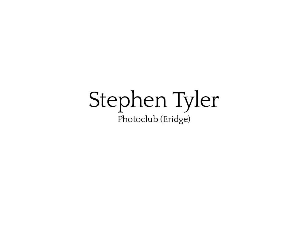 stephen_tyler_01.jpg