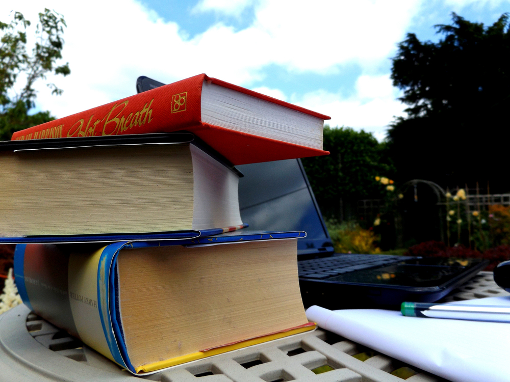 B_LisaMee01_Book.jpg